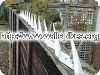Anti Climb Razor Spikes Installed On Perimeter Walls Or